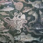 Allevamento e consumo del pesce antica Roma